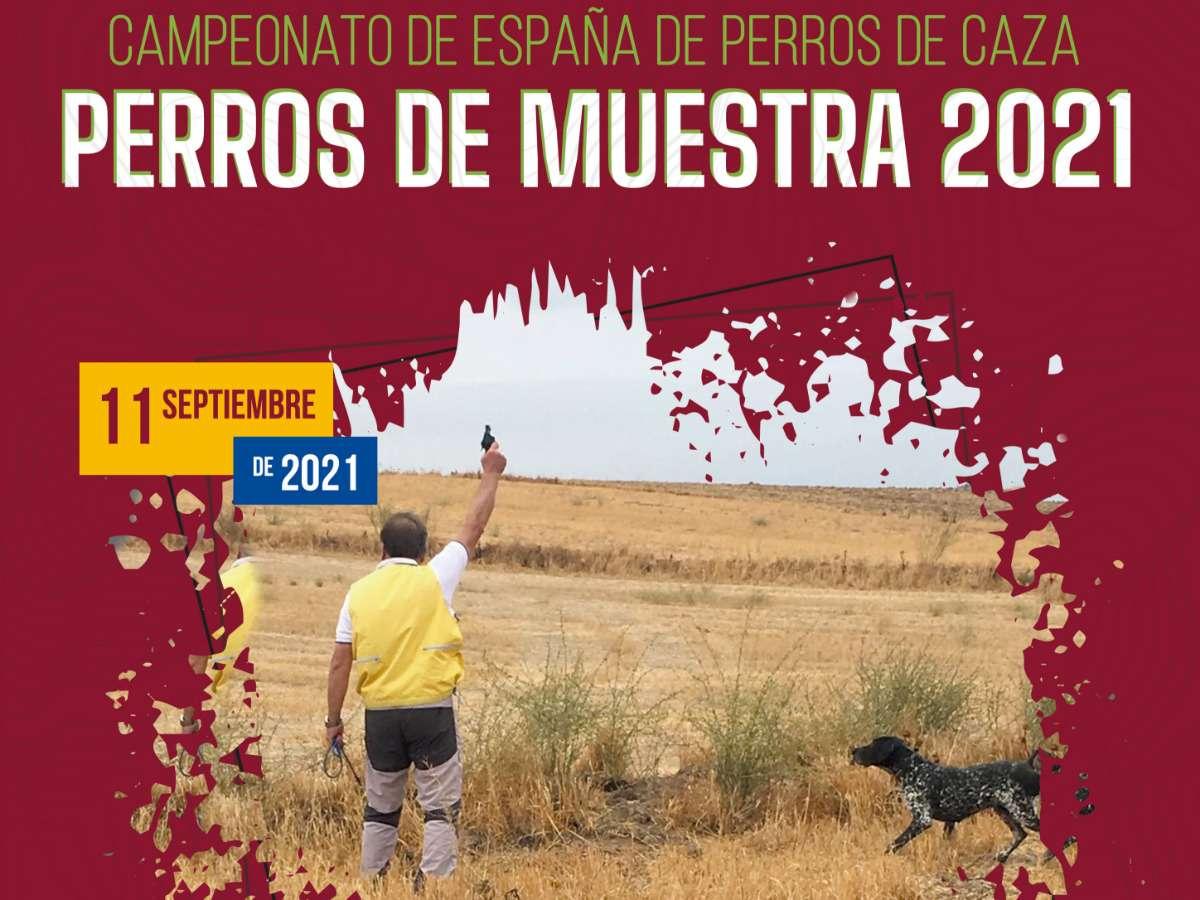 Abiertas inscripciones del Campeonato de España de Perros de Muestra