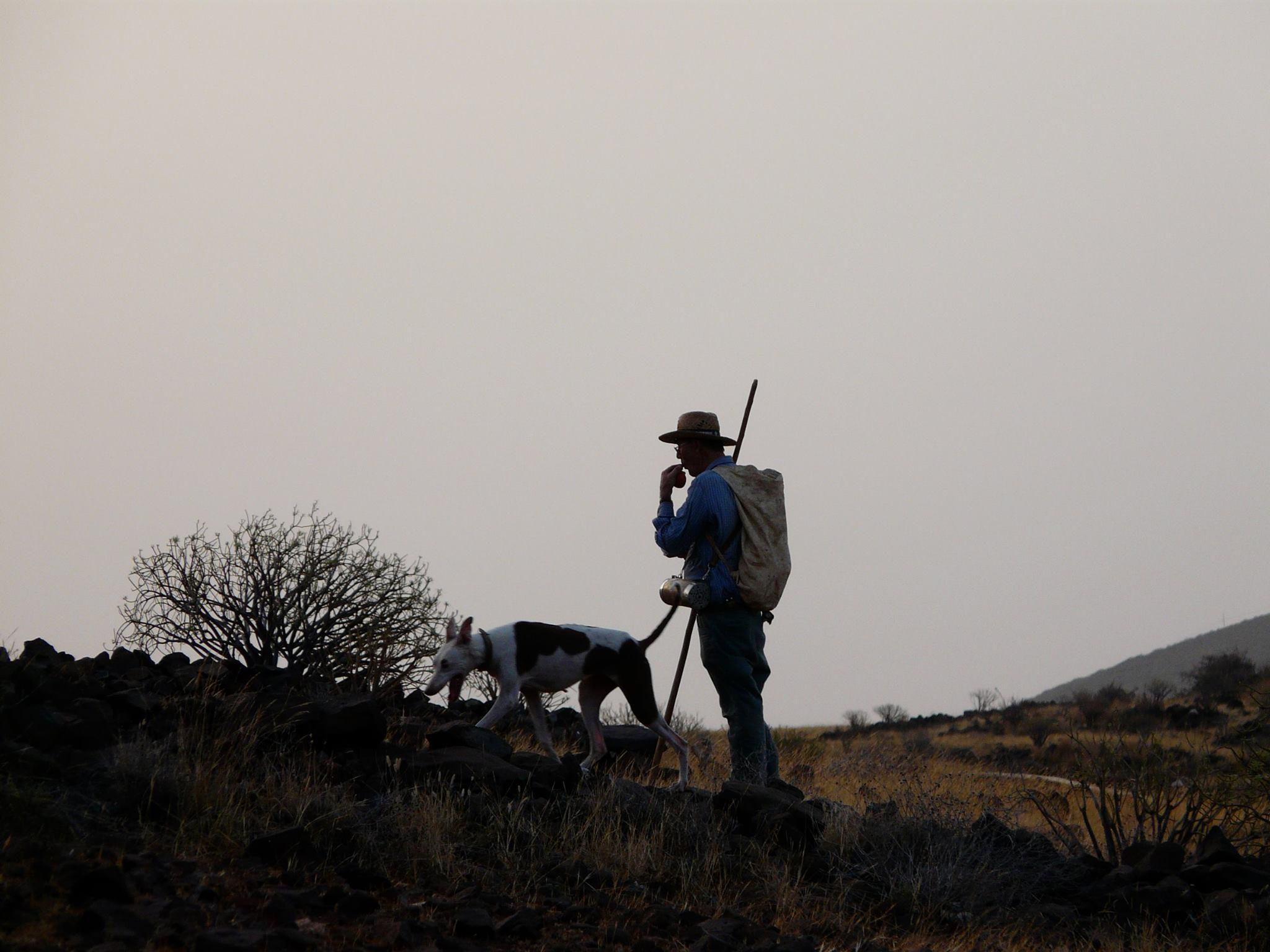 ADECAP y MUTUASPORT lanzan una campaña para la prevención de los accidentes de caza con la colaboración de Trofeo en la cesión de contenidos