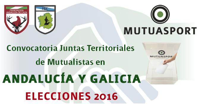 Convocatoria Juntas Territoriales de Mutualistas