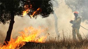 Cuando el monte se quema, algo tuyo se quema