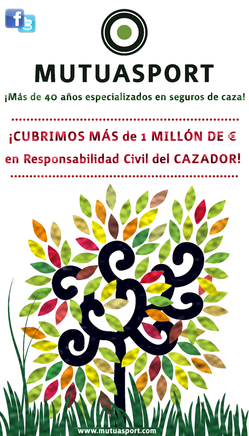 En Mutuasport cubrimos más de 1 millón de euros en Responsabilidad Civil