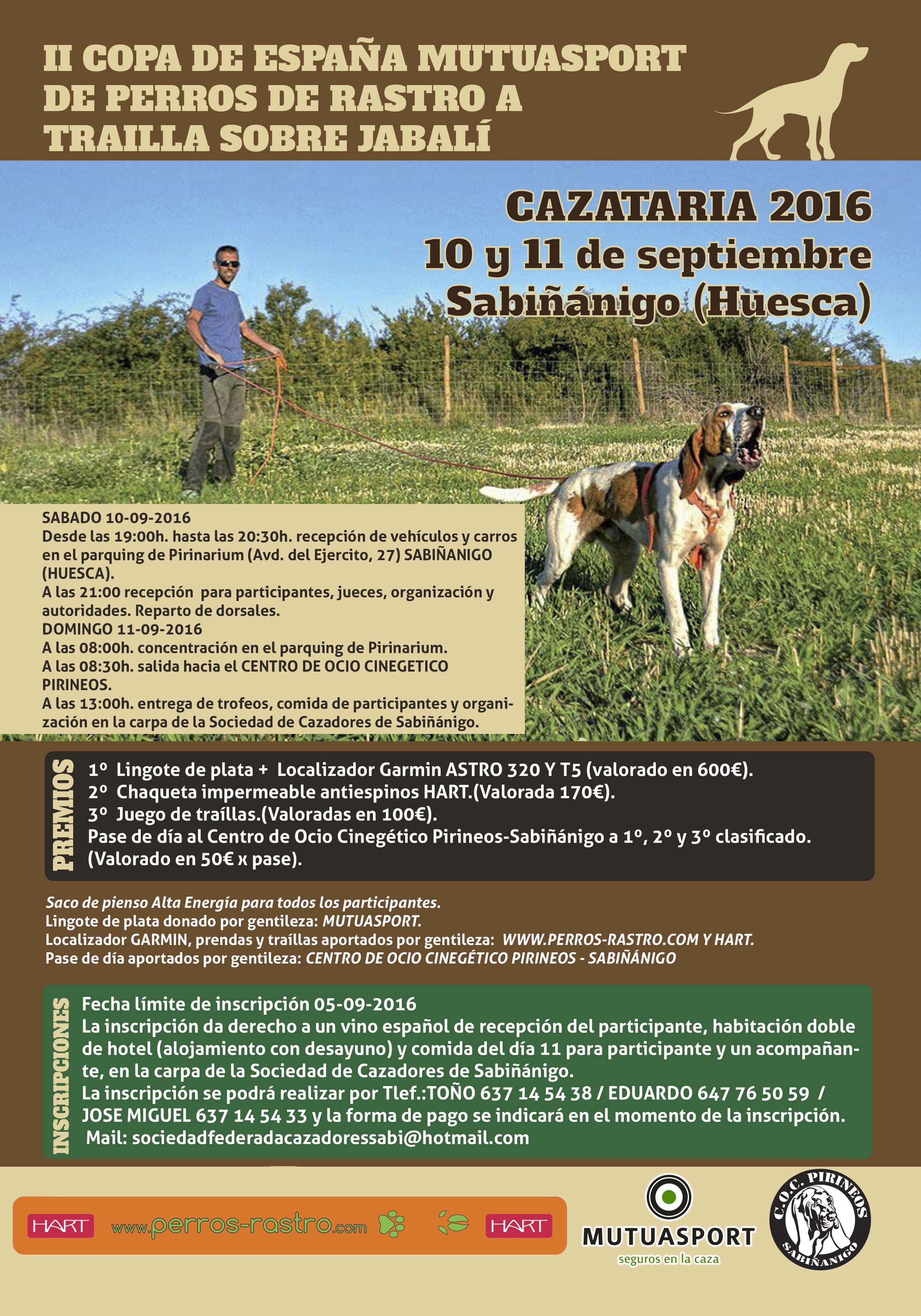 II Copa de España Mutuasport de perros de rastro a traílla sobre jabalí