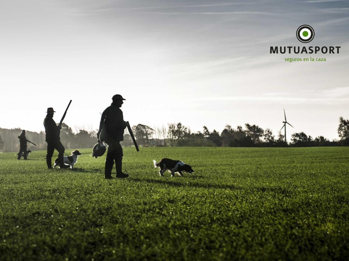 La escasa responsabilidad civil del seguro obligatorio supone uno de los mayores riesgos para los cazadores