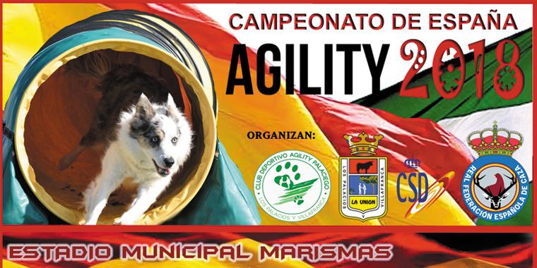Mutuasport en el Campeonato de España de Agility
