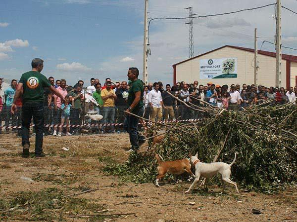 Mutuasport participa en el III día del Cazador de Extremadura