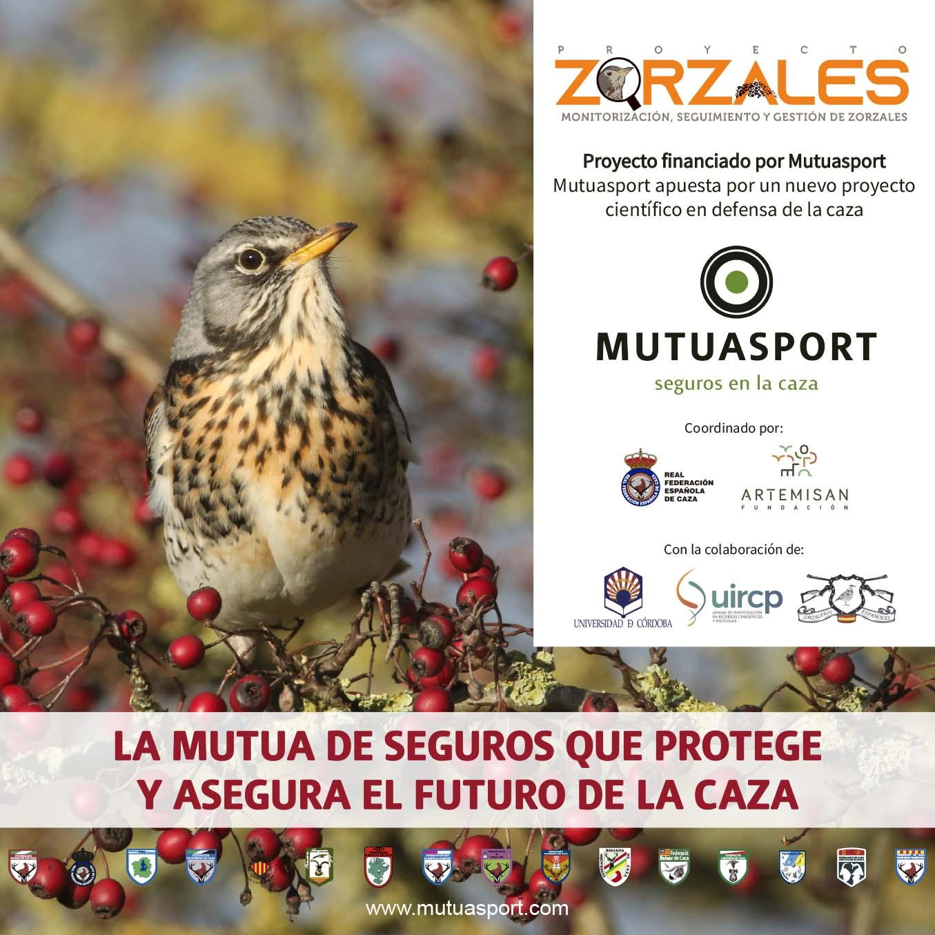 Proyecto ZORZALES: te contamos qué es, cómo participar y por qué es tan importante para la caza
