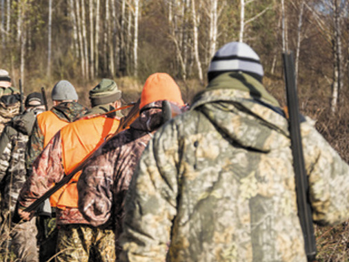 ¿Quiénes responden de los daños en un accidente de caza?