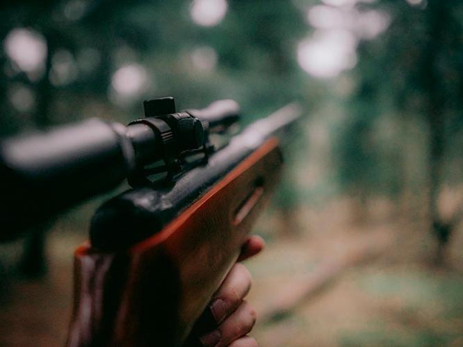 Seguros del cazador